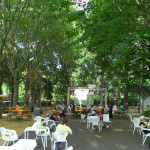 Personal-Concierge-Florence-LungarnoPecoriGiraldi02